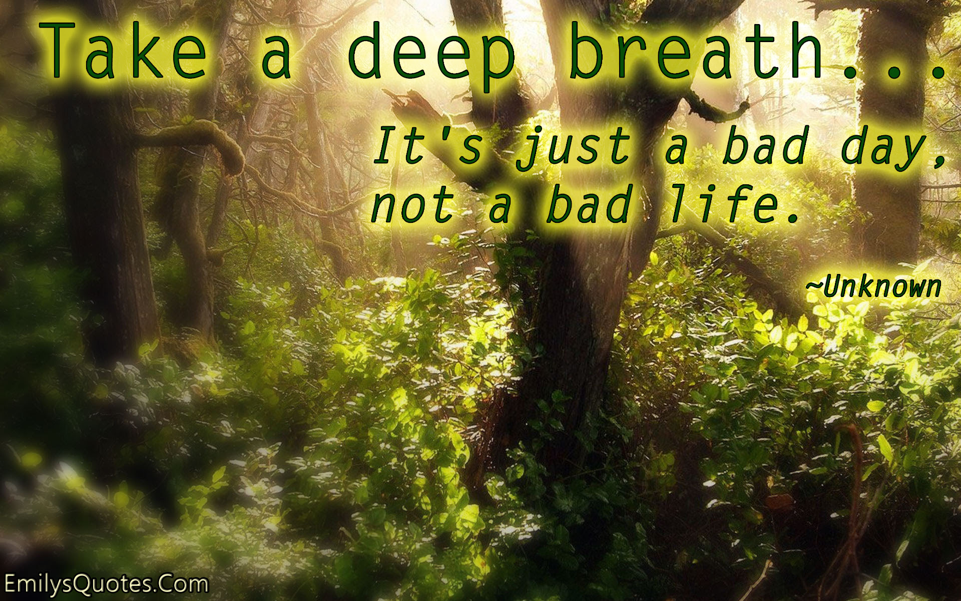 Quotes About Take A Deep Breath 76 Quotes