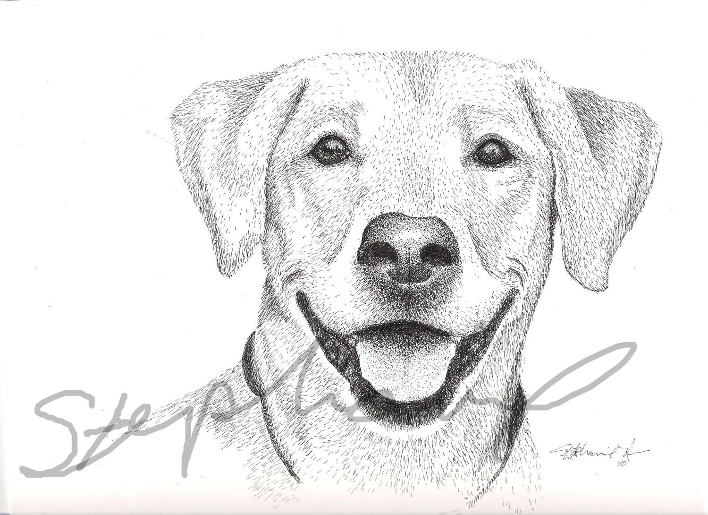 Dunia Belajar Dog Sketch Drawing Easy