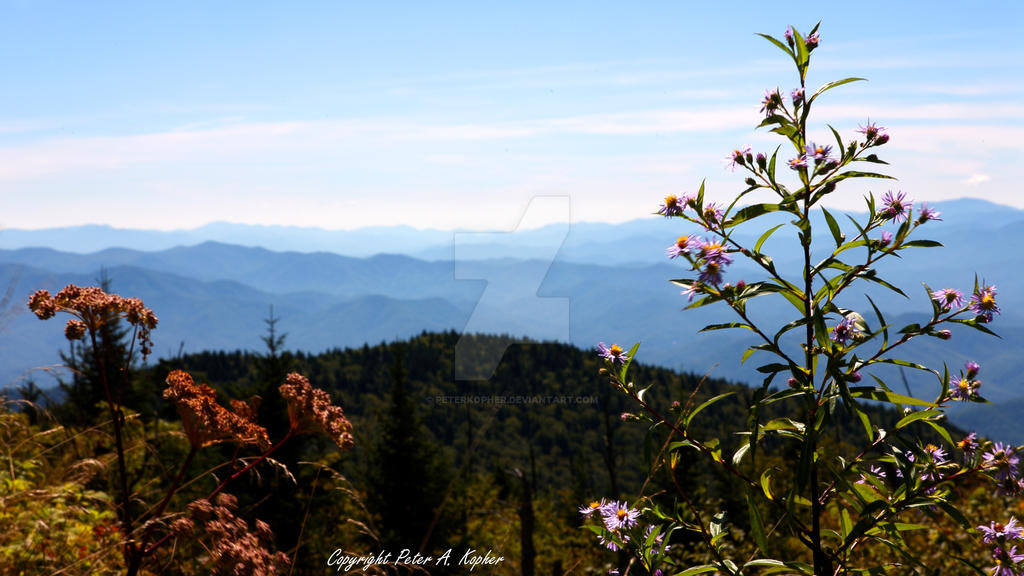 The View from Clingmans Dome by peterkopher