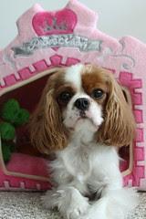 Mamaka Mills princess