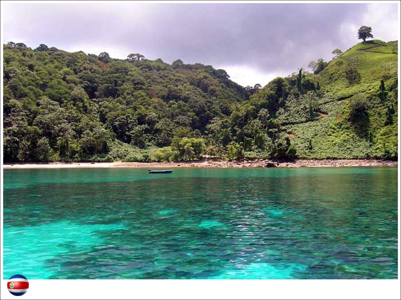 copa-protegida-costa-rica-08