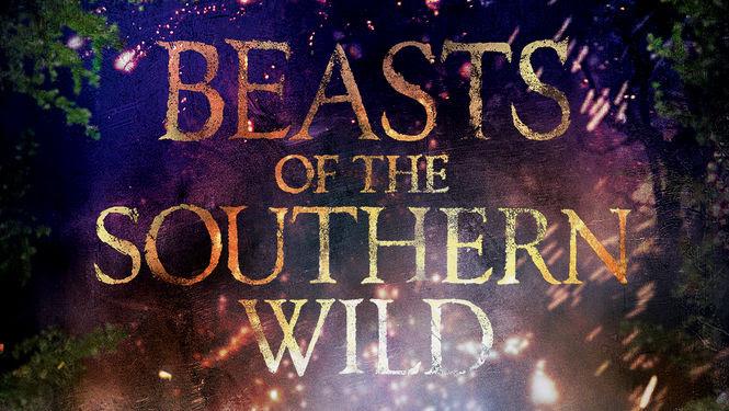 Beasts of the Southern Wild | filmes-netflix.blogspot.com