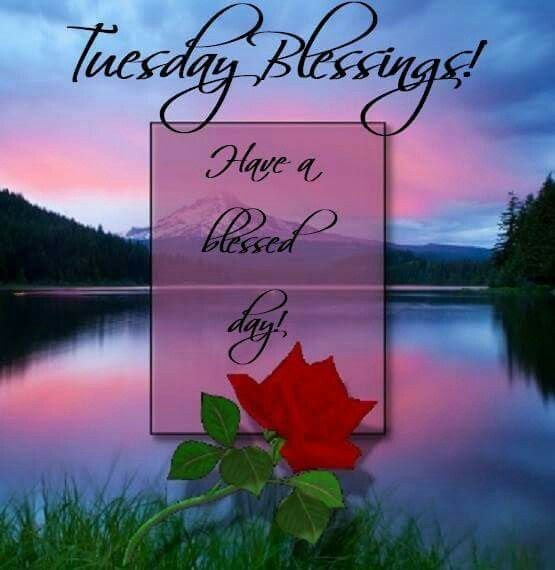 Tuesday Blessings Have A Blessed Day Quote Pictures Photos And