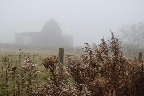 Hay barn in the fog