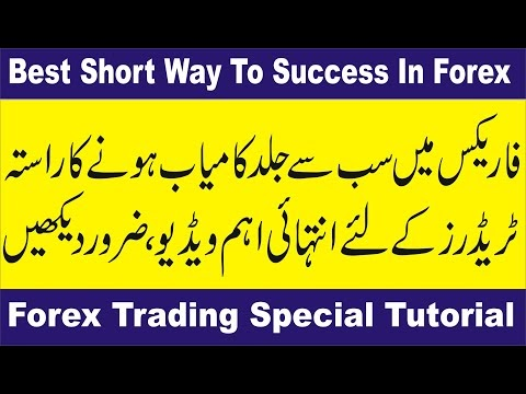 Real forex success stories