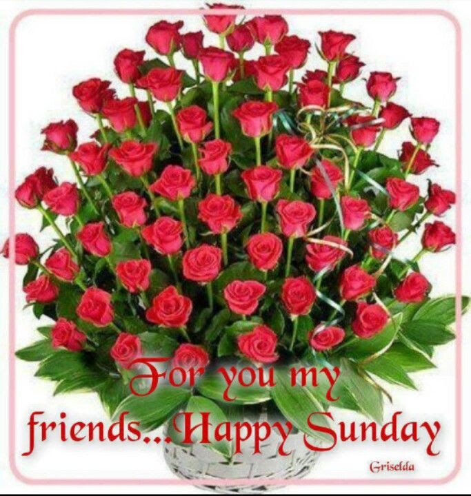 For You My Friends Happy Sunday Pictures Photos And Images For