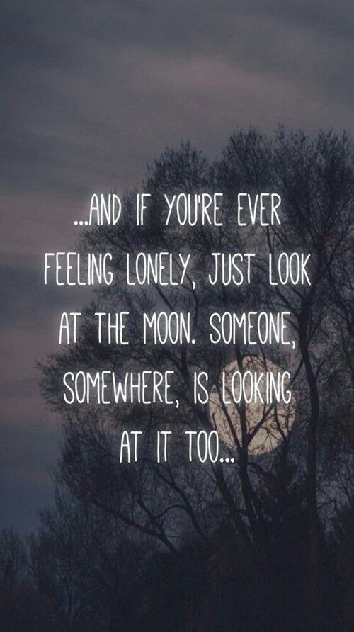 If You Re Ever Feeling Lonely Pictures Photos And Images For