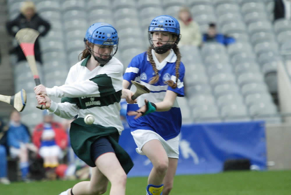 3.Camogie