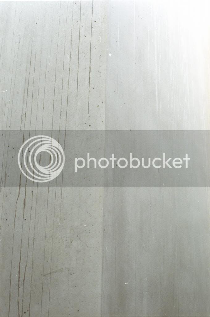 photo large29.jpg