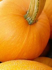 the great pumpkin (by ksuwildkat)