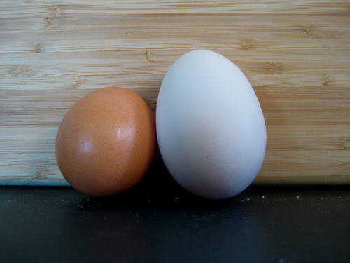 Tina's giant egg