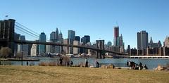 Brooklyn's view of Manhattan