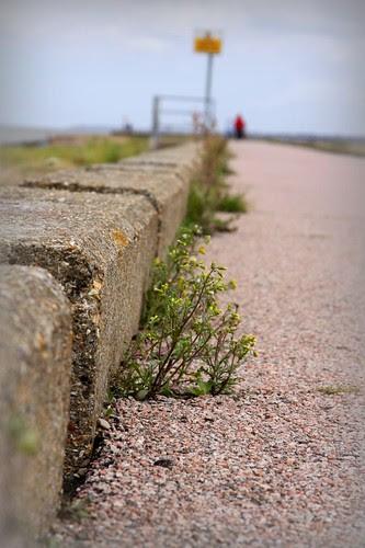 Sea Wall by ultraBobban