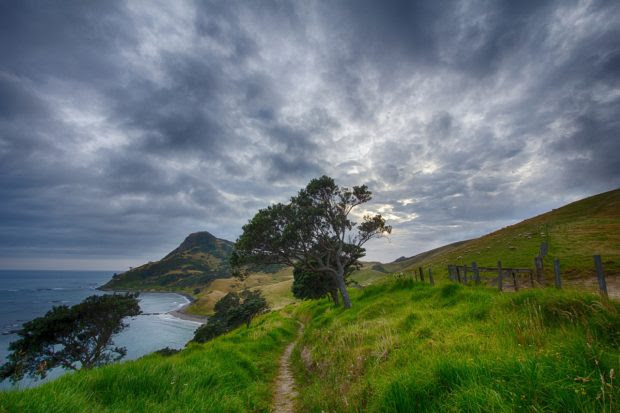 Three Reasons You Should Blog about Your Journey to New Zealand