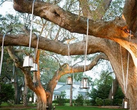 """Simple Outdoor Wedding Ideas   Related Posts for """" outdoor"""