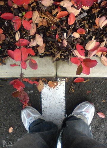fall feet :: høstføtter #1