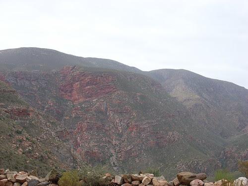 Sydafrika feb 2007 349