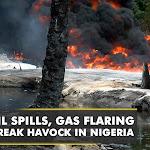 Oil spills, gas flaring wreak havock in Nigeria's Delta | World news | WION