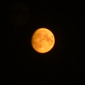 """The image """"http://www.strudel.org.uk/blog/astro/images/20050818_orange_moon.jpg"""" cannot be displayed, because it contains errors."""