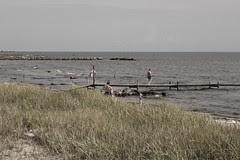 Öland beach (east side)