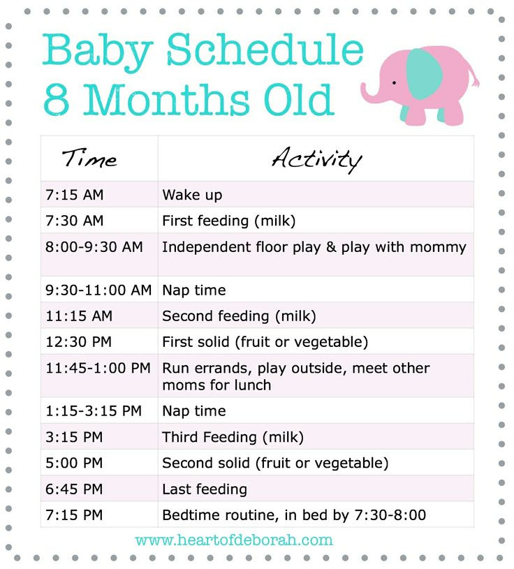 Daily Schedule 7 Month Old Baby | Daily Planner