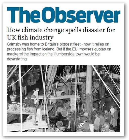 Observer 026-gri.jpg