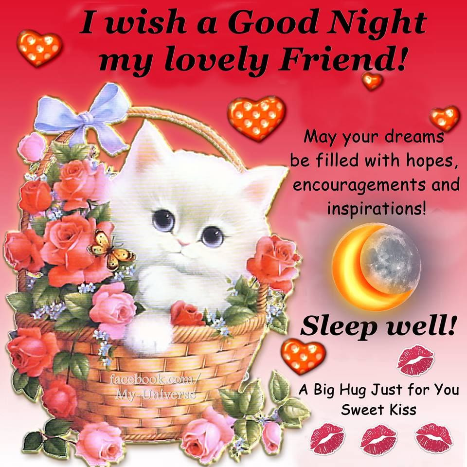 I Wish A Good Night My Lovely Friend Pictures Photos And Images