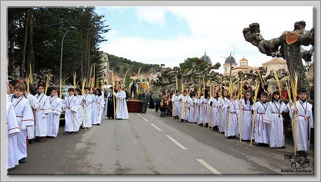 5 Domingo de Ramos en Briviesca