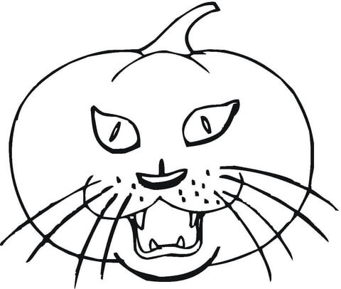 cat pumpkin coloring page  free printable coloring pages