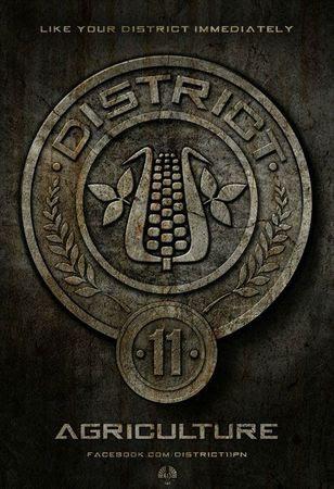 Hunger Games Affiche 11