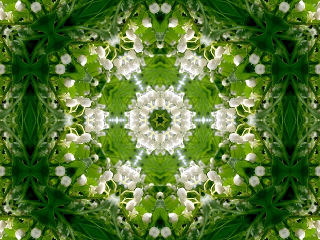 Lily of the Valley Mandala