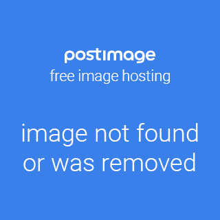 The Five Minute Flower Arranger by Jane Newdick