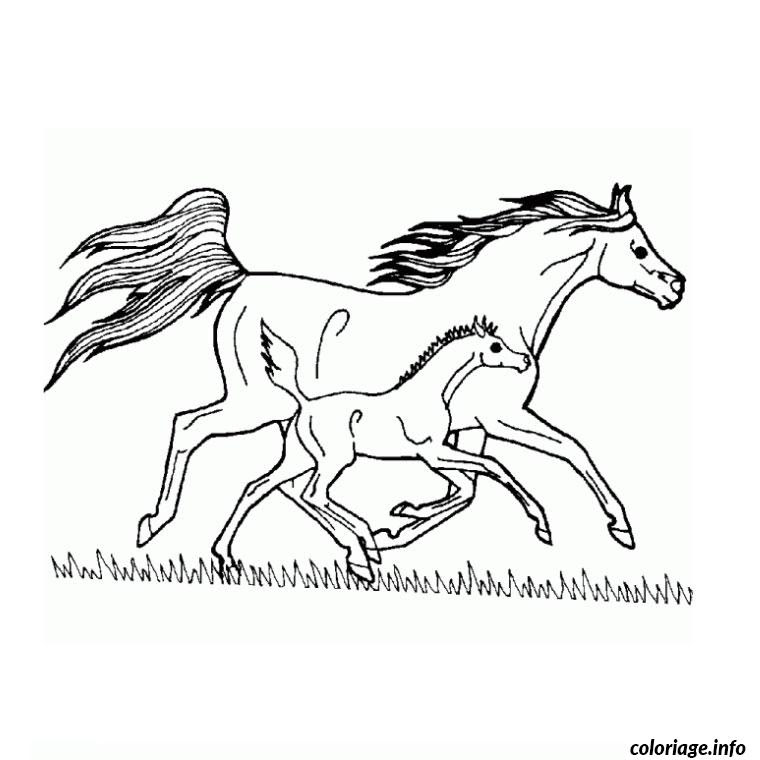 Coloriage Cheval Grand Galop Jecoloriecom