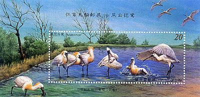 黑面琵鷺郵票發行紀念郵摺