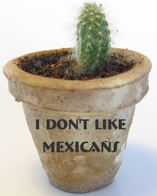 I Don't Like Mexicans