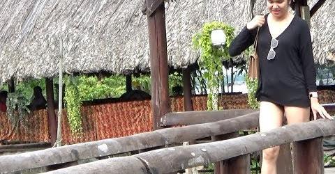 Toàn cảnh Cồn Phụng Bến Tre Việt Nam P1 | du lịch miền tây sông nước ăn đuông dừa