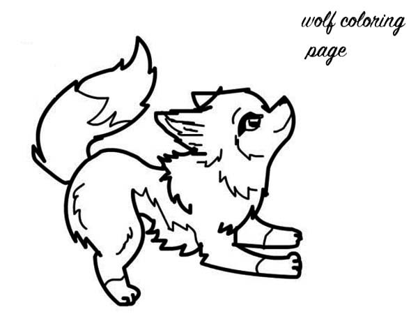 cute wolf Colouring Pages - ClipArt Best - ClipArt Best