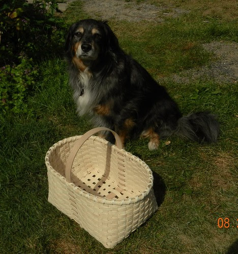 Morgan and my basket