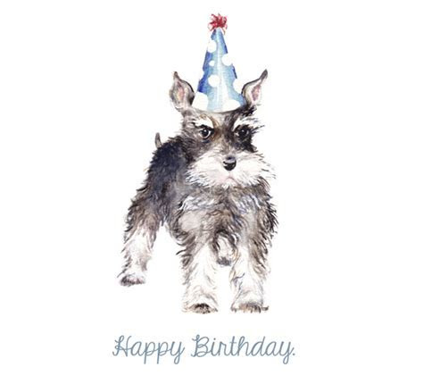Happy Birthday Schnauzer! Free Pets eCards, Greeting Cards