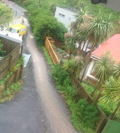 Runoff on a street in Aro Valley, central Wellington.