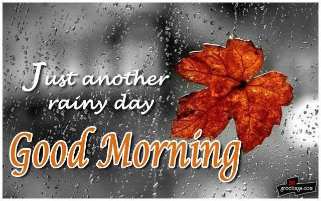 Just Another Rainy Day Good Morning Pictures Photos And Images