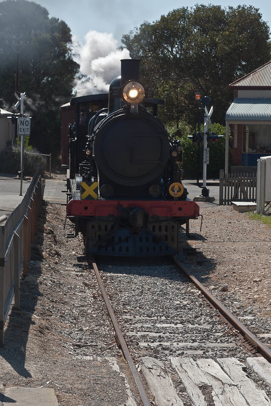 The cockle train