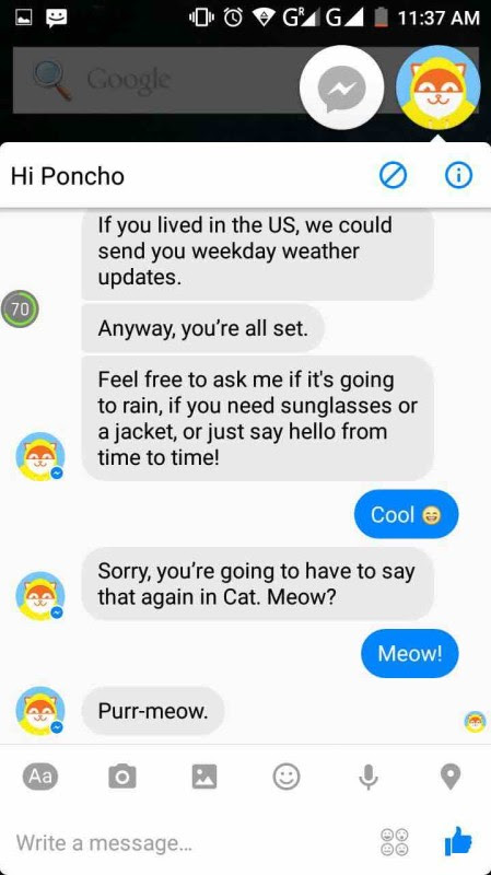 messenger chatbot poncho 5