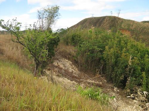 LandslideIMG_7642