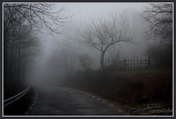 http://jovenlobo.files.wordpress.com/2009/01/tenebrosas-nieblas.jpg