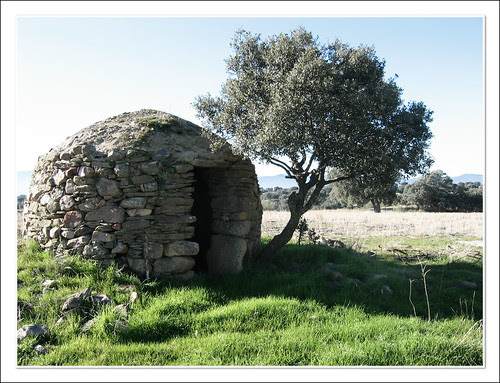 cabaña de pastor y encina
