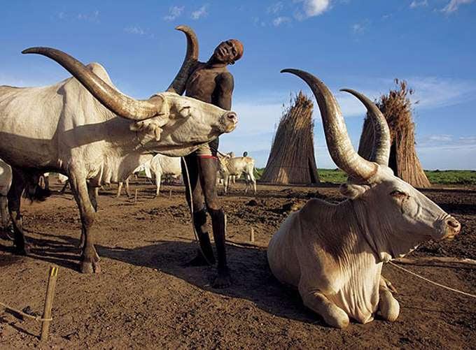 dinka-people-southern-sudan-angela-fisher-carol-beckwith-8