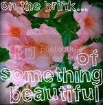 On The Brink Of Something Beautifult?
