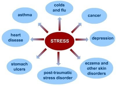 Why is Stress Bad? Uncovering The Hidden Effects of Stress ...