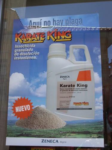 karate-king